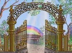 The Rainbows Bridge Poem
