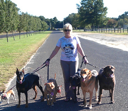 Loving Touch Pet Sitters and Dog Walker