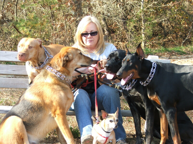 Pet sitters in Lacey Township - Loving Touch Pet Sitters