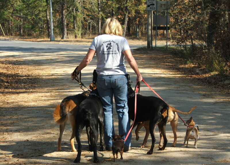 Pet Sitters in Whiting NJ - Loving Touch Pet Sitters