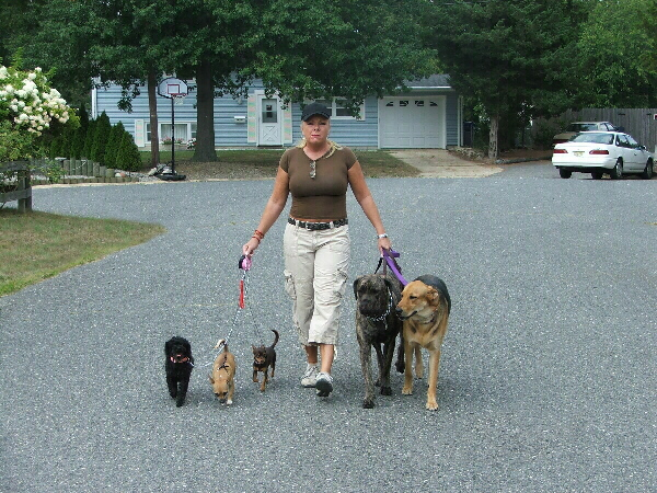 Pet Sitters in Ocean Gate NJ - Loving Touch Pet Sitters